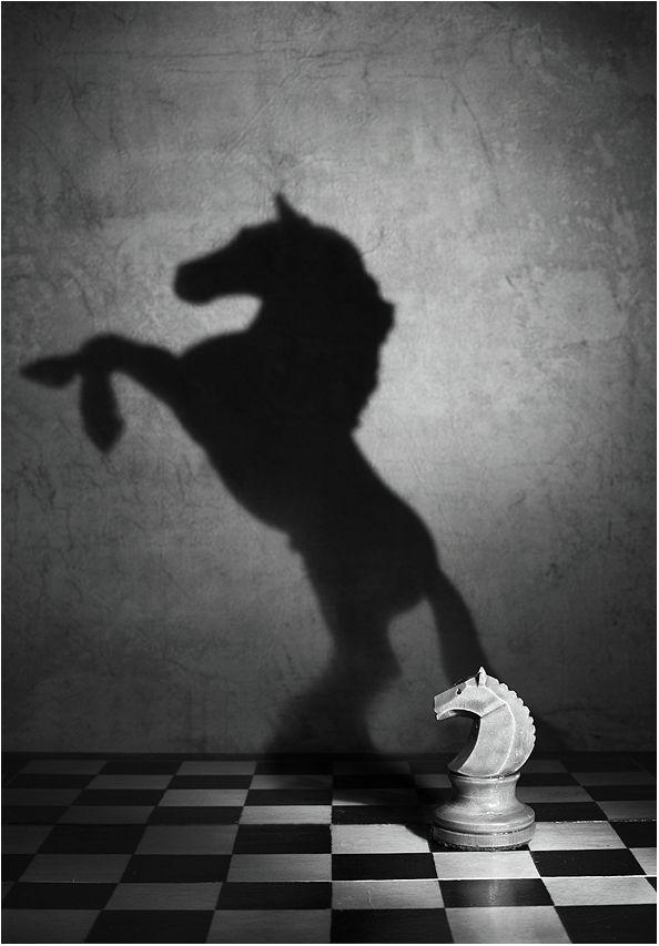 картинка свет и тень жизни видео