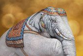 Elefante Bianco- GUIDO DANIELE
