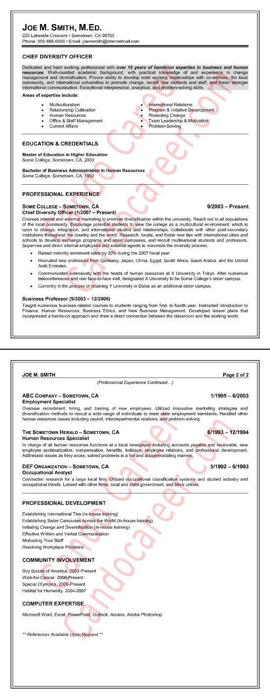 Chief Diversity Officer Resume Sample by Cando Career Coaching