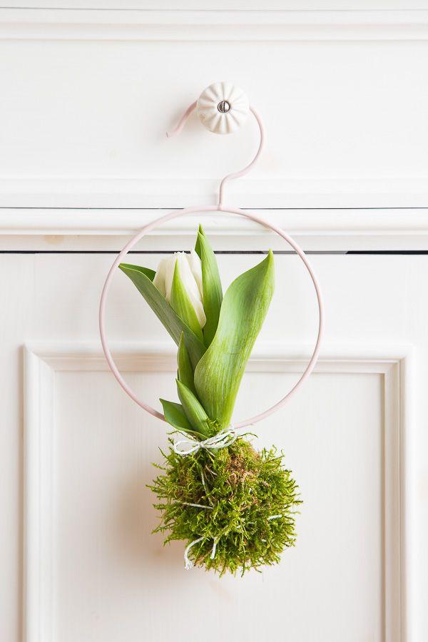 Dekorationsidee Mit Tulpen Tulpen Garten Tulpen Dekoration