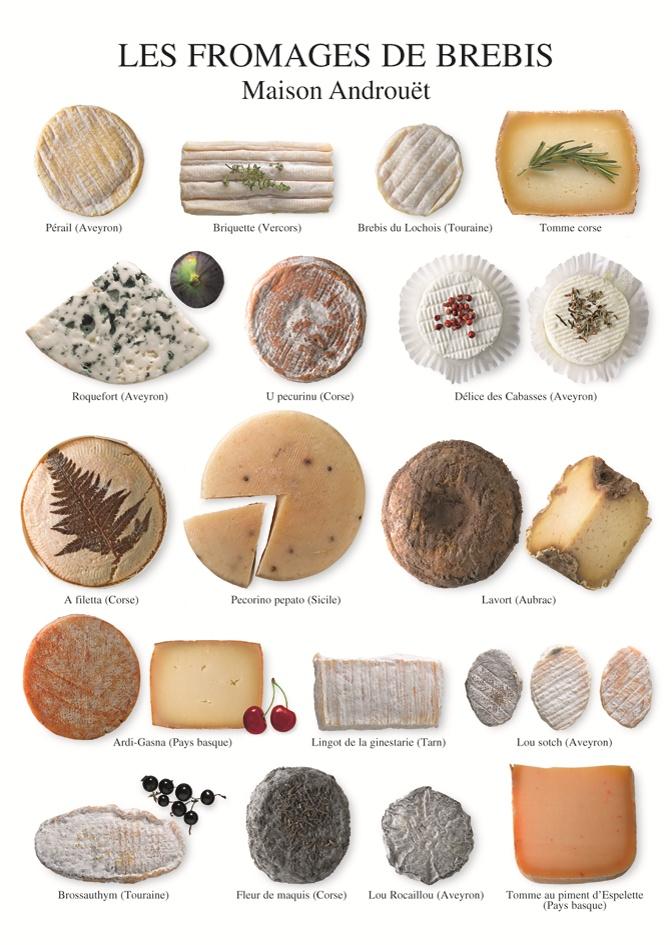Les fromages de brebis.