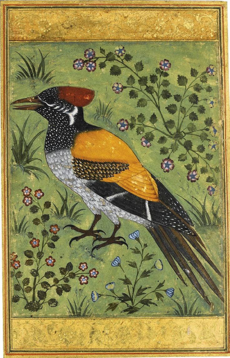 A yellow-backed woodpecker, attributed to Mansur, Mughal, circa 1585-90.