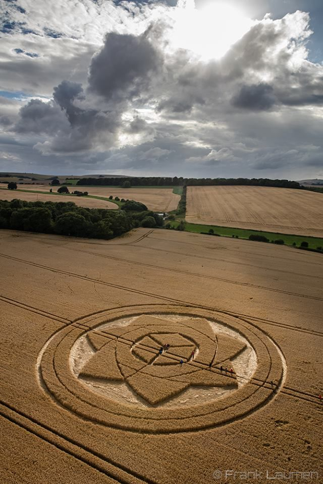 Crop Circle at Boreham Wood, Nr Lockeridge, Wiltshire. Reported 1st July 2017