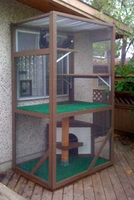 Links to an abundant variety of kitty cat enclosure ideas
