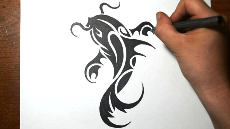How to Draw a Koi Fish - Simple Tribal Tattoo Design - YouTube
