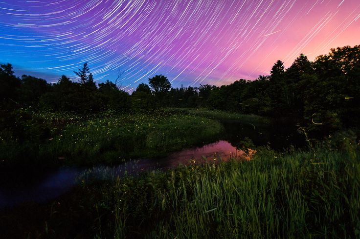 Photograph Star Lines and Fireflies by Matt Molloy on 500px