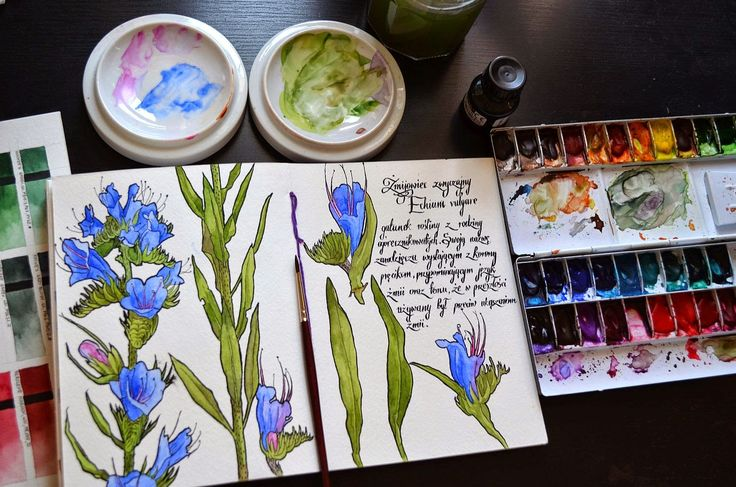 Beautiful watercolors! You Tube videos too!