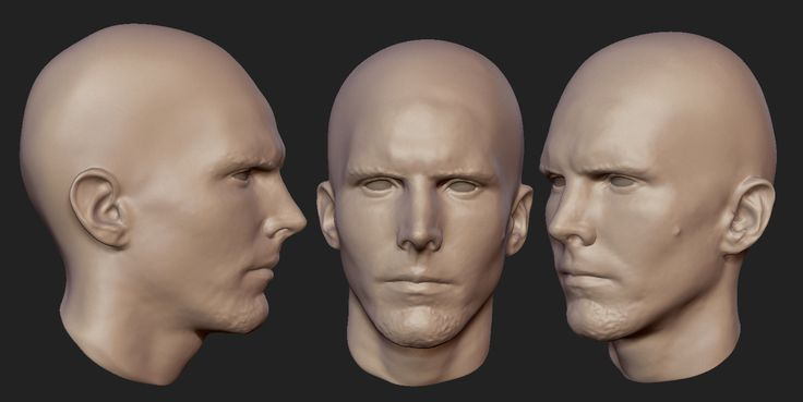 head-scan002.jpg (1500×754)
