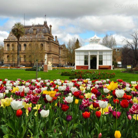 Spring in Bendigo