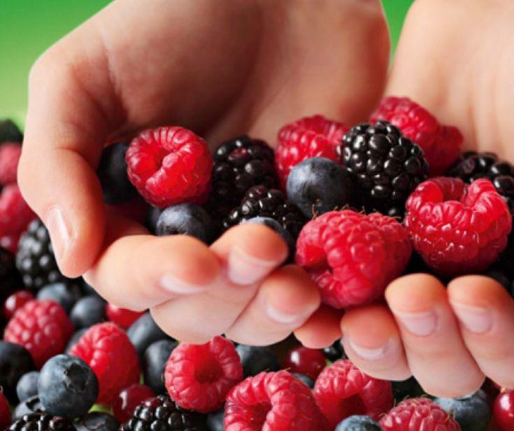 Ormai ci viene suggerito sempre più spesso di acquistare e consumare la frutta biologica.  I consigli dell'esperto ci spiegano esattamente perché è così importante.  È importante mangiare la frutta biologica, i consigli dell'esperto non lasciano dubbi a riguardo!