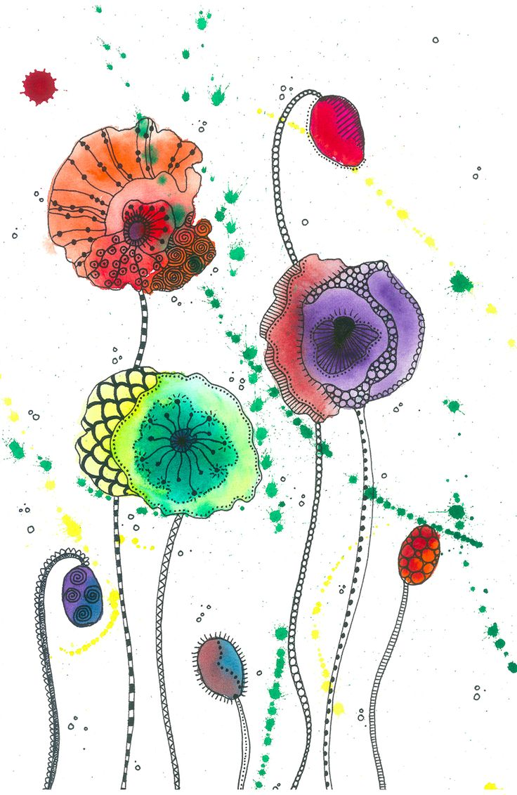Poppies - Wine & Untangle