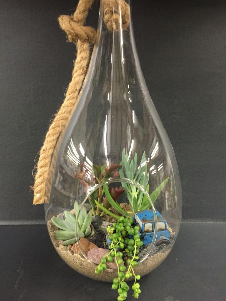 Succulent hanging terrarium by Angela Cherington