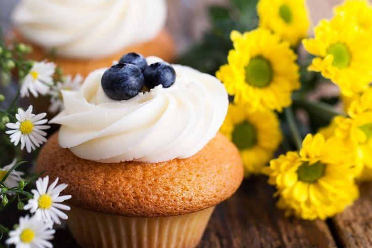 Творог один из самых полезных продуктов для нашего организма. Содержащиеся в нем питательные вещества помогают предотвратить заболевания печени, способствует нормализации нервной системы и важны для костной ткани. Давайте совмещать приятное с полезным и готовить любимые кексы на основе творога.  В этой статье вы найдете лучшие рецепты творожных кексов!