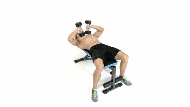 16 melhores exercícios para braços maiores - Saúde Masculina