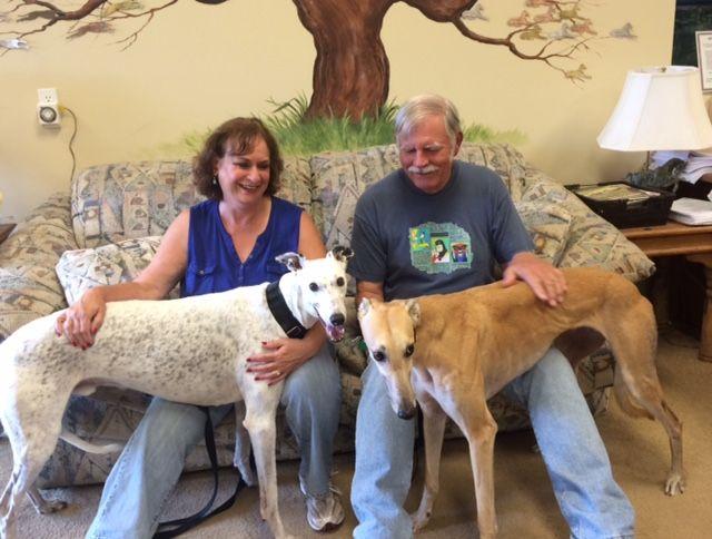 Athena with her new family, Brice, Marsha and Jim.  Congratulations to this new #fureverfamily! #adoptaretiredracer #gpi #greyhound #greyhoundpetsinc #greyhoundsmakegreatpets