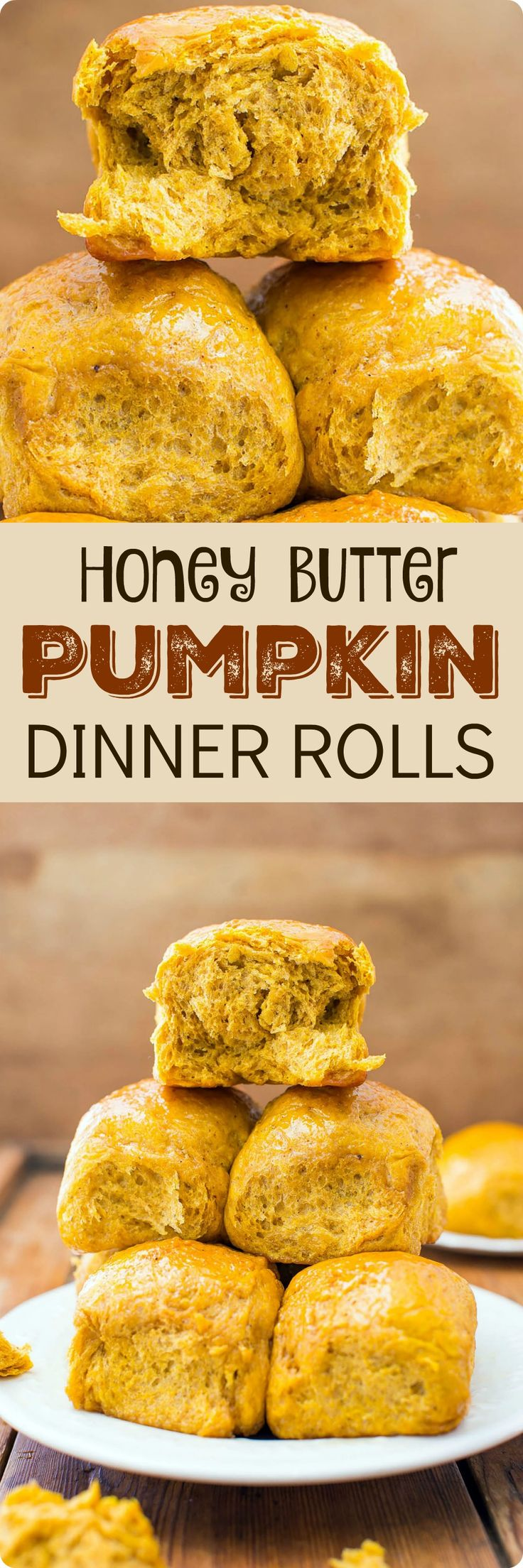 Honey Butter Pumpkin Dinner Rolls | The scents of pumpkin, spices, honey, and bread baking that waft through the house are positively intoxicating. Find recipe at redstaryeast.com.