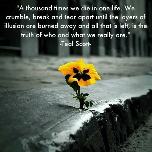 """""""A thousand times we die in one life. We crumble, break and tear apart until the layers of illusion are burned away and all that is left, is the truth of who and what we really are."""" -Teal Scott-"""