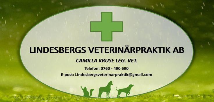 Lindesbergs Veterinärpraktik AB « Veterinär centralt i Lindesberg – En personlig vård av dina djur