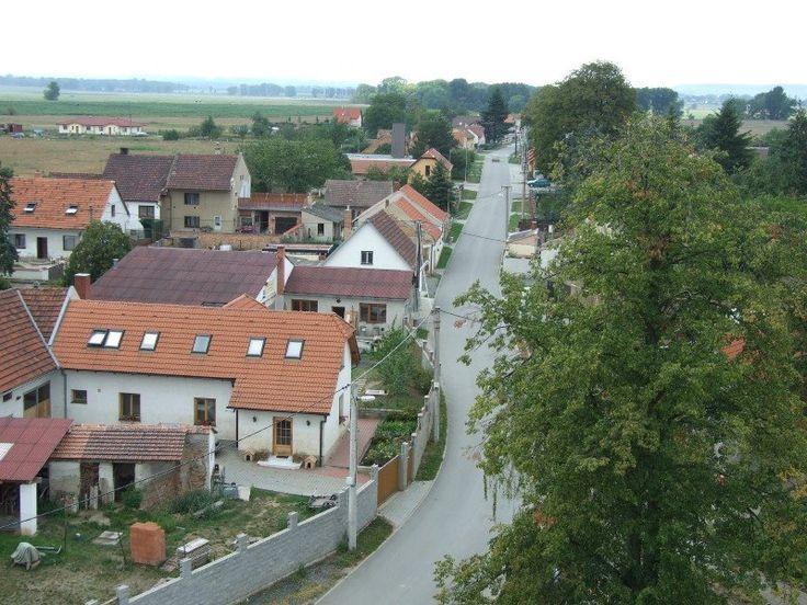 Pohled na silnici směr Kozárovice - Road to Kozarovice