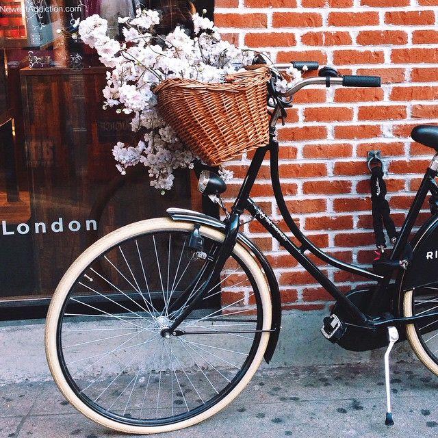 Romantica bici