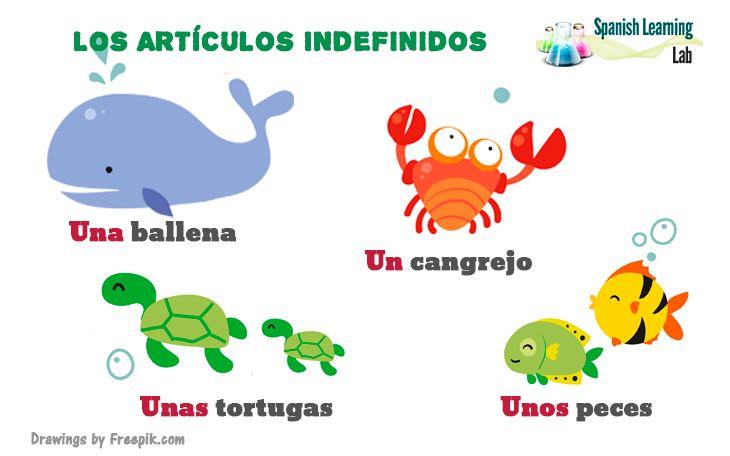 Los artículos definidos e indefinidos son muy útiles para hablar sobre diferentes temas en el idioma. El poder usar los artículos correctamente hace una gran diferencia al hablar español. Los artículos indefinidos o indeterminados son equivalentes a AN, A y SOME del idioma inglés. Esta lección, le mostrará varios ejemplos de cómo y cuándo usar los artículos indefinidos en español. #Aprenderespañol #LeccionesEspañol #ClaseEspañol #GramáticaEspañola #VocabularioEspañol