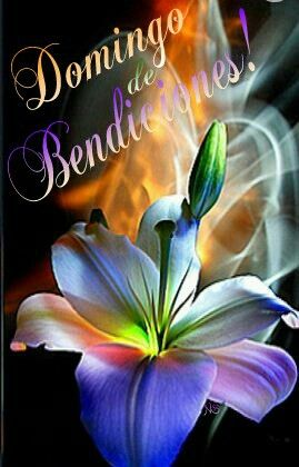 ¡Domingo de Bendiciones!