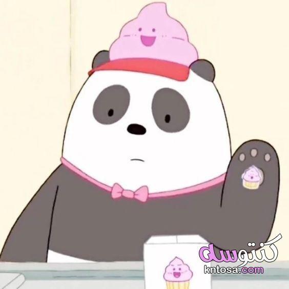 صور الدببة الثلاثة باندا خلفيات الدببة باندا دببة الباندا الثلاثة الدببة الثلاثة الدب الباندا كرتون Kn Wallpaper De Urso Wallpapers Bonitos Imagens De Desenhos