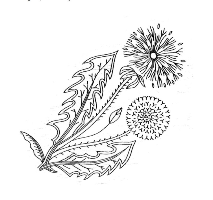 flower embroidery or redwork