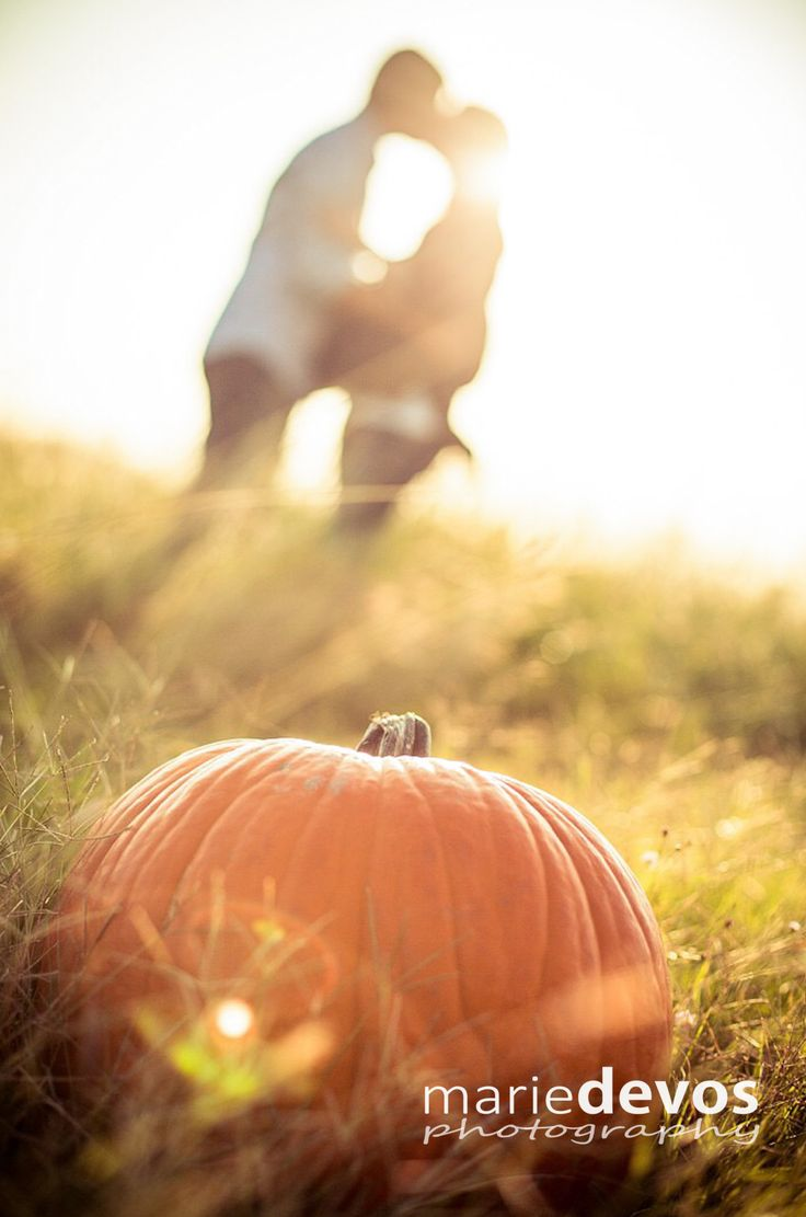 fall maternity photo shoot with a pretty pumpkin photography