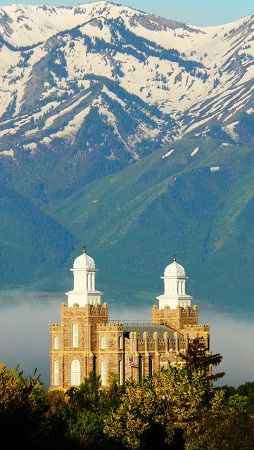 I think I will make Jordan paint this :) beautiful picture of the Logan temple!