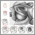 How to Draw a Rose from a Heart 1