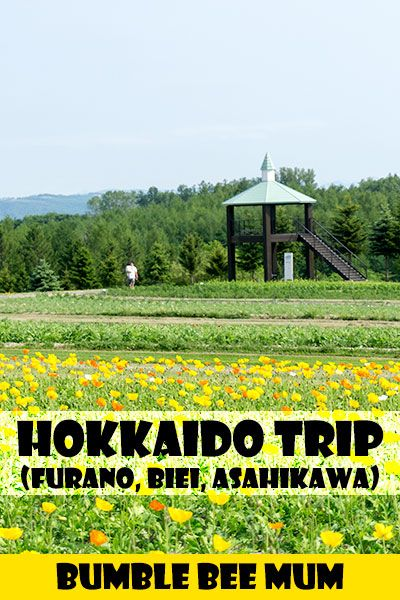 Our Hokkaido Trip in June 2016 (Part 1) - Furano, Biei, Asahikawa - Bumble Bee Mum