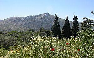 Battle of Marathon - Wikipedia, the free encyclopedia #persian wars