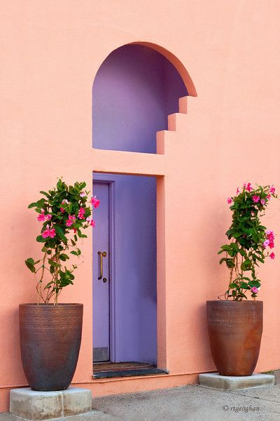 What can be behind this beautiful cut out lilac doorway . . . The Birdcage in Miami? An artist's loft in LA?