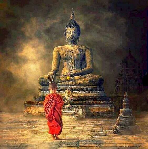 Buddha Quotes On War: 101 Best Images About Respect (Sajda) On Pinterest