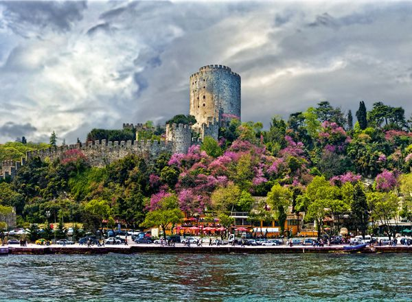 Istanbul turns purple in April/ May as judas trees blossom - the best 20 days in the city!