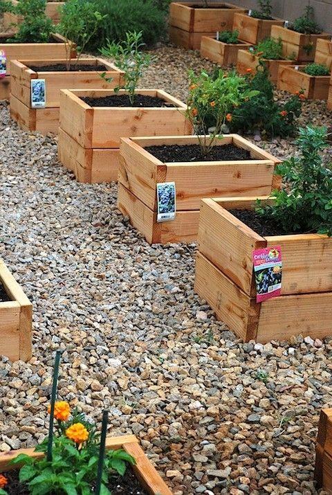 Mini raised garden beds