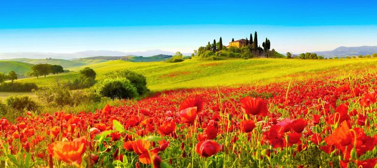Val d'Orcia_4