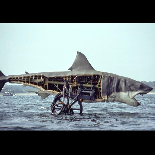 Bruce The Mechanical Shark From Steven Spielberg S Jaws On The Set Spielberg Steven Spielberg Movie Poster Art