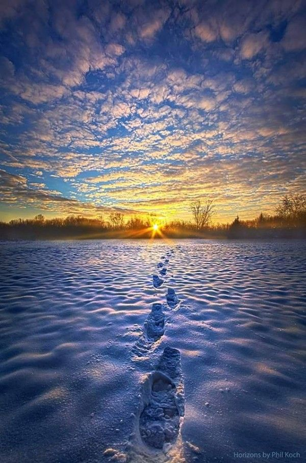 Phil Koch, 'Horizons.Winter begins in Wisconsin 11/27/15 Winter is coming to northerly latitudes … A beautiful look at an early snowfall. EarthSky