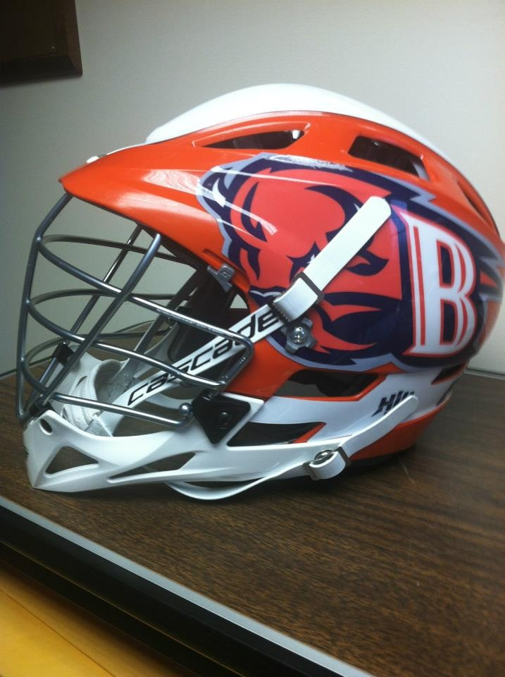 2013 Bucknell Bison Domes