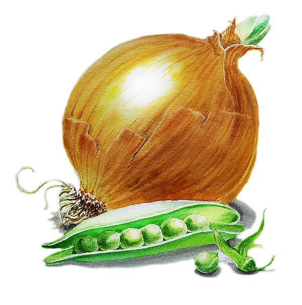 Onion and Peas http://www.fineartirina.com/