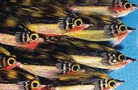 fishing flies made with feathers