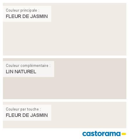 Castorama Nuancier Peinture - Mon harmonie Peinture  FLEUR DE JASMIN mat de DULUX VALENTINE Le mat
