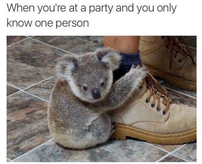 20 Memes That Are So You Being Awkward at a Party