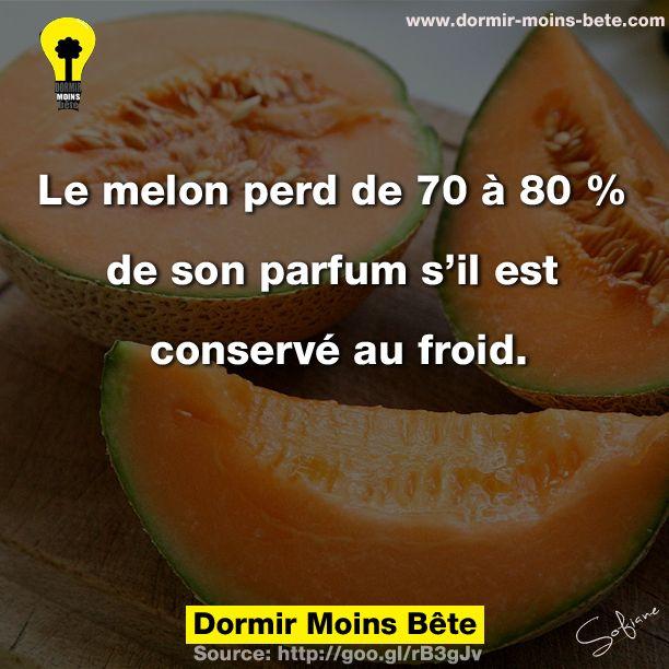 Le melon perd de 70 à 80% de son parfum s'il est conservé au froid.