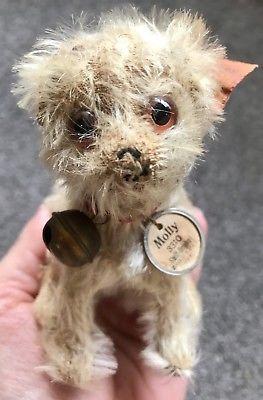 Rare Antique Steiff Molly Dog FF Button 1926-1934 , Ear Tag & Chest Tag-WOW!