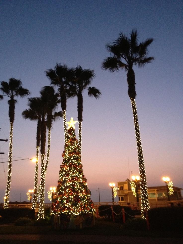 524 Best Coastal Christmas Images On Pinterest Christmas