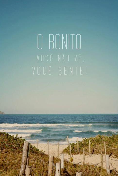 O bonito você não ve, você sente! Leia Mais: http://vidaminimalista.com #bonito #sente