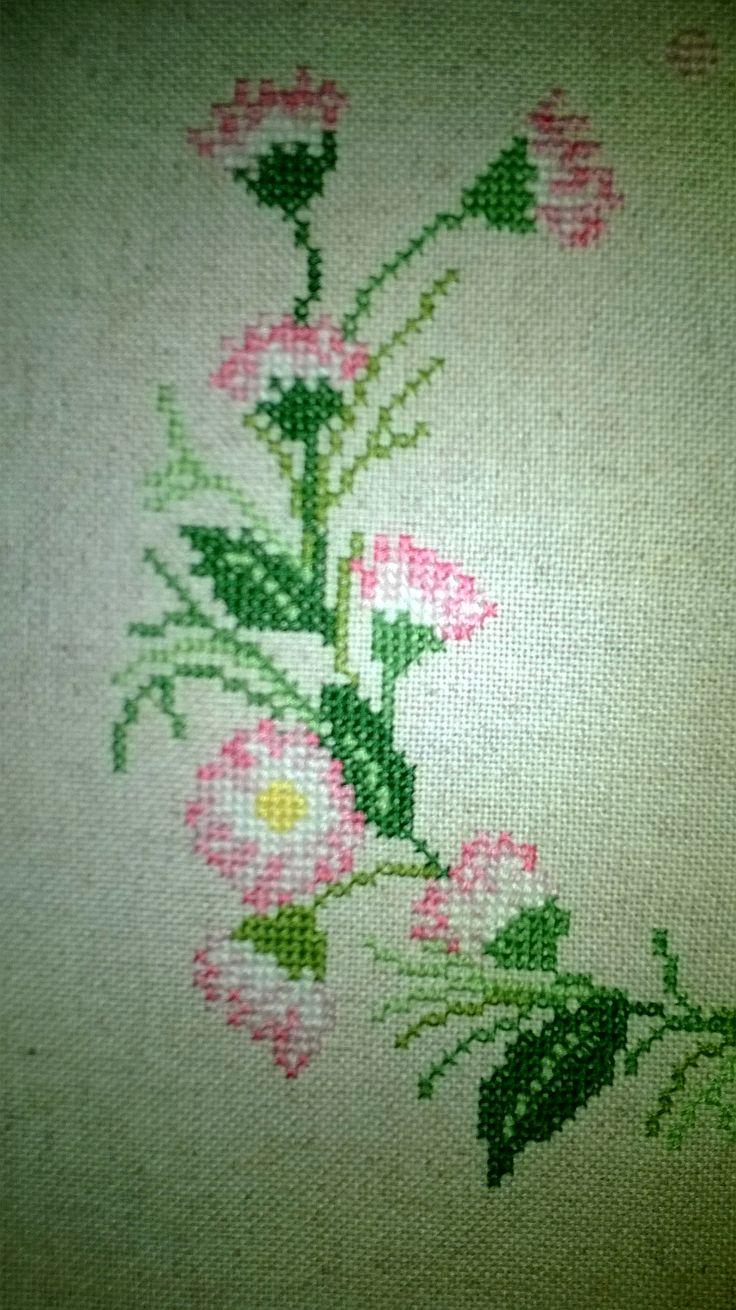 Gänseblümchen (Detail)
